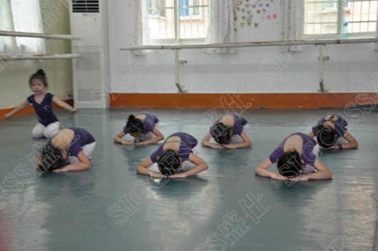 舞蹈是人类历史上最早产生的艺术形式之一,人们称之为艺术之母,它随着历史的进步而变化发展。作为一种社会艺术的审美形态,它从远古就与人类的狩猎。耕作、宗教、战斗、性爱等生产与生活息息相关。舞蹈能直接、生动、具体地表现文字或其他艺术形或难以表现的人的内在深层的心理状态、强烈的感情、鲜明的个性,并能控索与体现人生的价值与意义。  由于人体动作不停顿地流动变化的特点,它必须在一定的空间(舞台或广场)和一定的时间中存在;而在舞蹈活动中,一般都要有音乐的伴奏,要穿特定的服装、有的舞蹈还要手持各种道具,如果是在舞台上表演